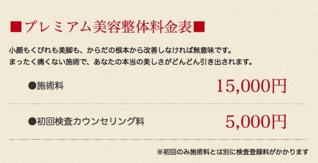 プレミアム美容整体料金表 施術15000円 初回検査料5000円